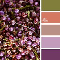 color solution for living room, deep orange, lilac, lilac shades, olive, pale violet, palette and color match, peach, Violet Color Palettes, violet shades.