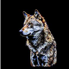 Glowing Wolf Fractal by Tracey Lee Art Designs