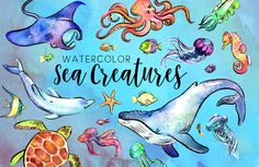 Fascinating sea animal pictures for kids 27 watercolor creatures illustrations creative market Pencil Illustration, Graphic Illustration, Illustrations, Sea Creatures Drawing, Animal Pictures For Kids, Watercolor Sea, Cross Hatching, Creative Sketches, Easy Drawings