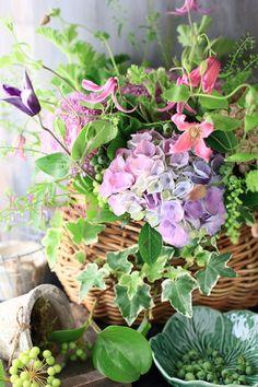 Floral Arrangement ~ Spring Flowers in a Basket My Flower, Fresh Flowers, Spring Flowers, Beautiful Flowers, Deco Floral, Arte Floral, Hortensia Hydrangea, Hydrangeas, Bouquet Champetre