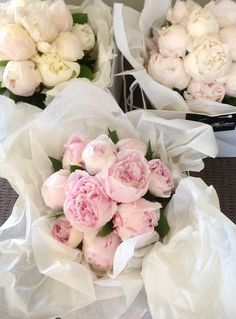 This Pin was discovered by Kallie Hickman. Discover (and save!) your own Pins on Pinterest. | See more about cabbage roses, peonies and roses.