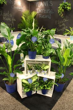 Signs With Benefits: How Signage Can Sell Your Products And Your Store | Greenhouse Grower