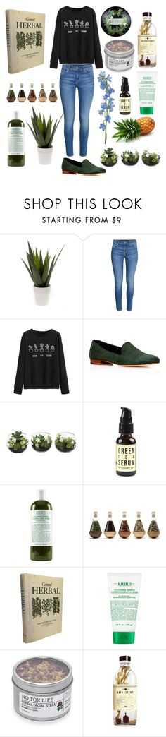 """Green witch"" by thorntonangel ❤ liked on Polyvore featuring WithChic, Mansur Gavriel, Kiehl's, Peter Hall & Son, GREEN, witch, healing, herbal and happyplace"