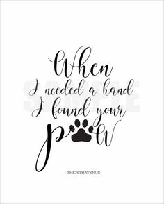 I miss you Roo! You were with me through all the IVF issues, my best snuggler of life. Love you Riley Puppy Tattoo, Daschund Tattoo, Poodle Tattoo, Doberman Tattoo, Cat And Dog Tattoo, Chihuahua Tattoo, Beagle Tattoo, Dog Toys, Cute Dogs