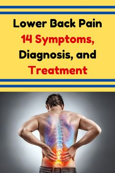 For the most part, more youthful individuals to 60 years of age) are bound to encounter lower back pain because of a lumbar muscle strain Diy Funny, Hilarious, Funny Quotes, Funny Memes, Muscle Strain, Low Back Pain, Videos Funny, Dumb And Dumber, Funny Pictures