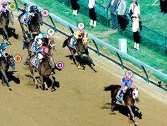 Thunder Gulch's 1995 Kentucky Derby Race Sequence