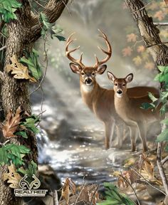 Realtree Fabric Deer Fabric Deer Wall by thebusybeequilting, $12.50
