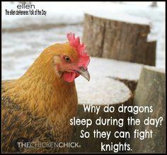 Chicken Chick
