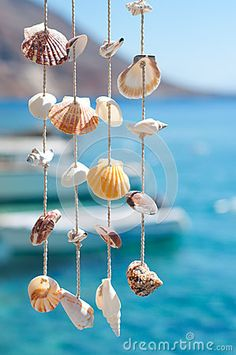 Sea shell decoration in Loutro, Crete. Would make a great hanging in her room