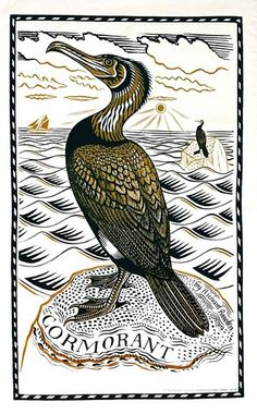 Cormorant - linocut by Richard Bawden artist Graphic Prints, Art Prints, Block Prints, Bird Illustration, Illustration Artists, Scratchboard, Sea Birds, Wood Engraving, Gravure
