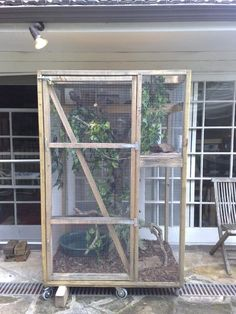 Not adult iguana cages will not