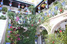 Einer von vielen wunderschönen Innenhöfen in Córdoba Am Meer, Floral Wreath, Wreaths, Plants, Home Decor, Cordoba, Andalusia, Indoor Courtyard, Vacation Places