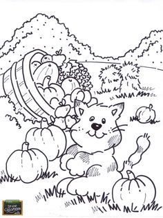 Cat in the Pumpkin Patch! Free teaching tool - printable Agricultural coloring page for kids. Perfect for Fall! www.farmtimeclassroom.com
