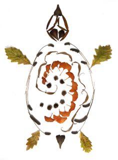 polynesian sea turtle (mary jo hoffman)