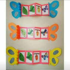 Life cycles preschool - Nature and society Life Cycle Craft, Hungry Caterpillar Activities, Art For Kids, Crafts For Kids, Insect Crafts, Nature Crafts, Butterfly Life Cycle, Lifecycle Of A Butterfly, Butterfly Crafts