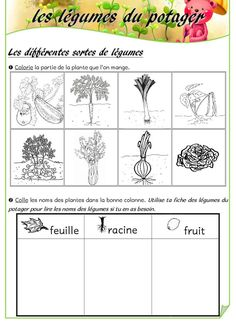 French Lessons, French Class, French Worksheets, Cycle 2, Plantar, Plantation, Kindergarten Worksheets, Horticulture, Teaching