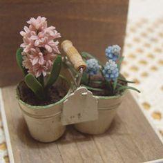 Dollhouse Miniature [ROSY]
