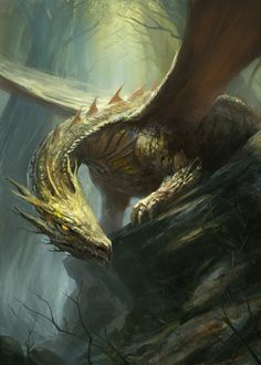 """Dragons, dragon  http://gerezon.deviantart.com/art/Forest-Dragon-369452120"""