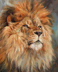 Animal Paintings: David Stribbling - Art - Lion by David Stribbling