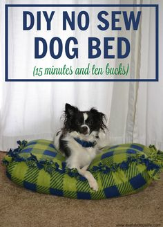 DIY No Sew Dog Bed (In Just 15 Minutes and For 10 Bucks) #CarpetProtect #ad