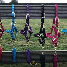 Heavy quality nylon halters with a chic look. The MHS Fancy halters (and halter ropes) are available in different colors and sizes! Horse Halters, Horse Supplies, Horse Tack, Ropes, Different Colors, Fancy, Personalized Items, Instagram, Shabby Chic