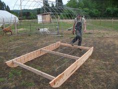 New Goats Arrive   Berggren Demonstration Farm Blog