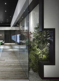 clean and sleek indoor garden..