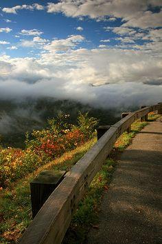 Blue Ridge Parkway Morning