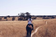 Horse riding working holidays in the African bush