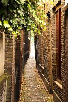 Dordrecht<br />Dordrecht - Zakkendragersstraatje