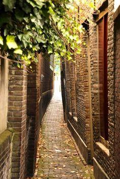 Dordrecht. The Netherlands Zakkendragersstraatje