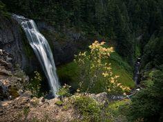 Salt Creek Falls Oregon [OC] [3000x2250]