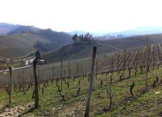 Itinerario enogastronomico tra Langhe e Roero - il Vino Lonely, Vineyard, Mountains, Places, Nature, Travel, Outdoor, Italia, Outdoors