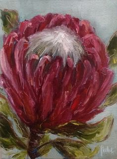 """Christine's protea daily painting by Heidi Shedlock Abstract Canvas Art, Diy Canvas Art, Oil Painting Abstract, Acrylic Art, Painting & Drawing, Plant Illustration, Flower Illustrations, Protea Art, Botanical Art"