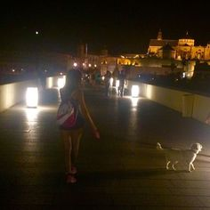 Puente Romano #me #dog #night #cathedral #lovedog #love #goodnight #thursday #happy #cordoba #like4like #likeforlike #instagood #instamoment #instalike #pet #picoftheday #picture #girl #woman #nike by carol_montenie