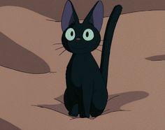 Kiki's Delivery Service Cat, Kiki Delivery, Studio Ghibli Art, Studio Ghibli Movies, Manga Anime, Anime Art, Gato Gif, Chef D Oeuvre, Kitty Wallpaper