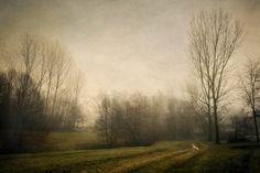 Carlo Milani, Autunno, 2012  Giclée print  Collezione privata