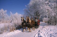 Winter Love, Winter Is Here, Zell Am See, Hidden Treasures, Winter Wonderland, Snow, Christmas Stuff, Nice, Holiday