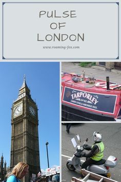 A photo essay of London Fox Facts, Travel Around The World, Around The Worlds, Narrowboat, Photo Essay, Memoirs, Family Travel, Storytelling, South Africa