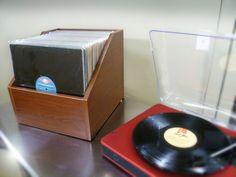Bin-E LP Storage Classic Oak