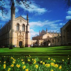 Cheltenham, England, by Nothing better than England on a fair day! Cheltenham England, Cheltenham Spa, Places Ive Been, Places To Go, Places In Europe, London Travel, Great Britain, Barcelona Cathedral, United Kingdom