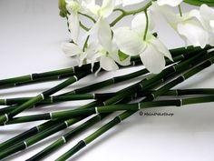 Die 15 Besten Bilder Von Deko Bamboo Flowers Und Garden