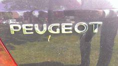 PEUGEOT a. hoofdletters b. recht c. horizontaal breed d. ingedrukt e. schreefloos