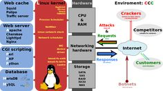 L.A.M.P. Stack Diagram Linux, Apache, MySQL, Perl  (or PHP or Python)