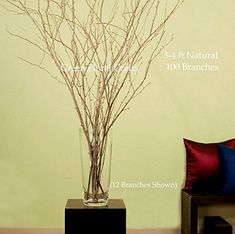 Green Floral Crafts Natural Birch Branches 3-4 Ft, Bale of 100pcs   Free Gift Pack Leaf Lilies * Learn more by visiting the image link.