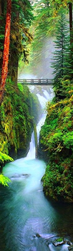 This kind of looks like the gorge here in Oregon..