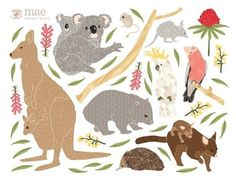 Wall Decals Australian Animals Reusable and by lovemaestore, $75.00