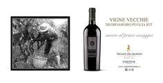 """Il nostro Negroamaro """"VIGNE VECCHIE"""". Corposo, pieno, complesso. Richiami di ciliegia, prugna, tabacco e spezie. AMORE AL PRIMO ASSAGGIO!  Our Negroamaro """"VIGNE VECCHIE"""". Opulent, full, complex. Notes of cherry, plum, tobacco and spice. LOVE AT FIRST TASTE!  #Farnesevini, #Negroamaro, #Vino, #Vinoitaliano, #wine, #italianwine, #apulianwine, #vignevecchie, #vinitalien, #farnese"""