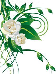 薔薇のイラスト見本-白バラ・・茎葉・蔓
