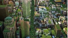 Greener cities the key to happier, healthier, stress-free lives. A 'daily dose of nature' via green open spaces and roof gardens is needed to support people's wellbeing, a new study says.